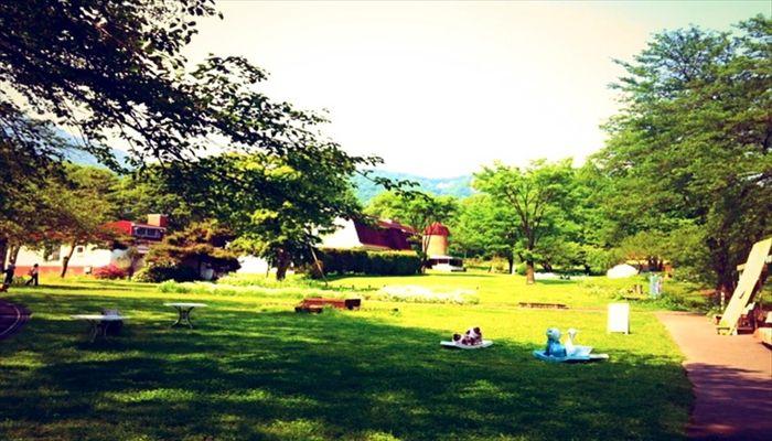 春にすること 春にしたいこと 春の遊び ピクニック