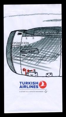 In Flight Art