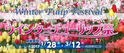 0126 キッチンカー 移動販売車 木曽三川公園 ウインターチューリップ祭り アイコン