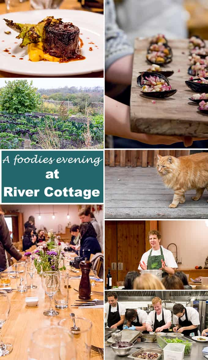 A foodies feast at River Cottage