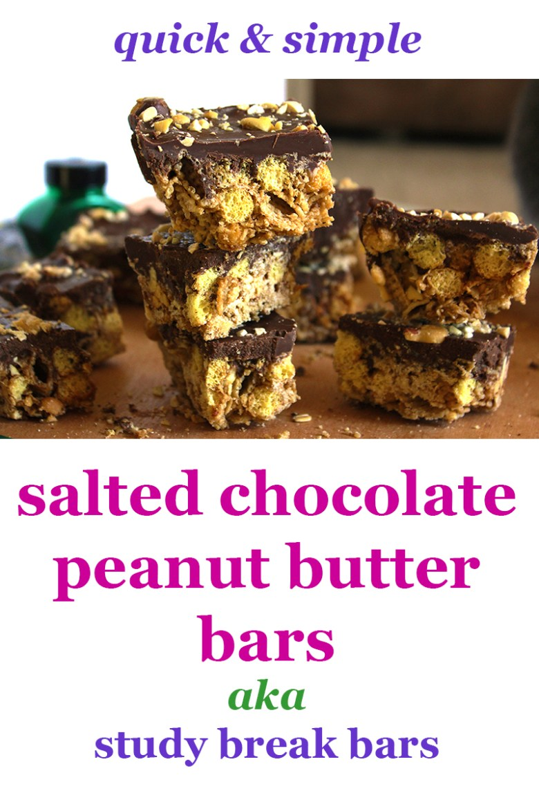 salted-chocolate-peanut-butter-bars-easy-quick-study-break-bars