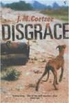 J. M. Coetzee: Disgrace