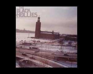 black hollies
