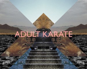 adult-karate-cd-cover