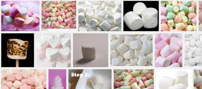 Dit zijn marshmallows. Dit zijn dus geen flødelorrer, he.
