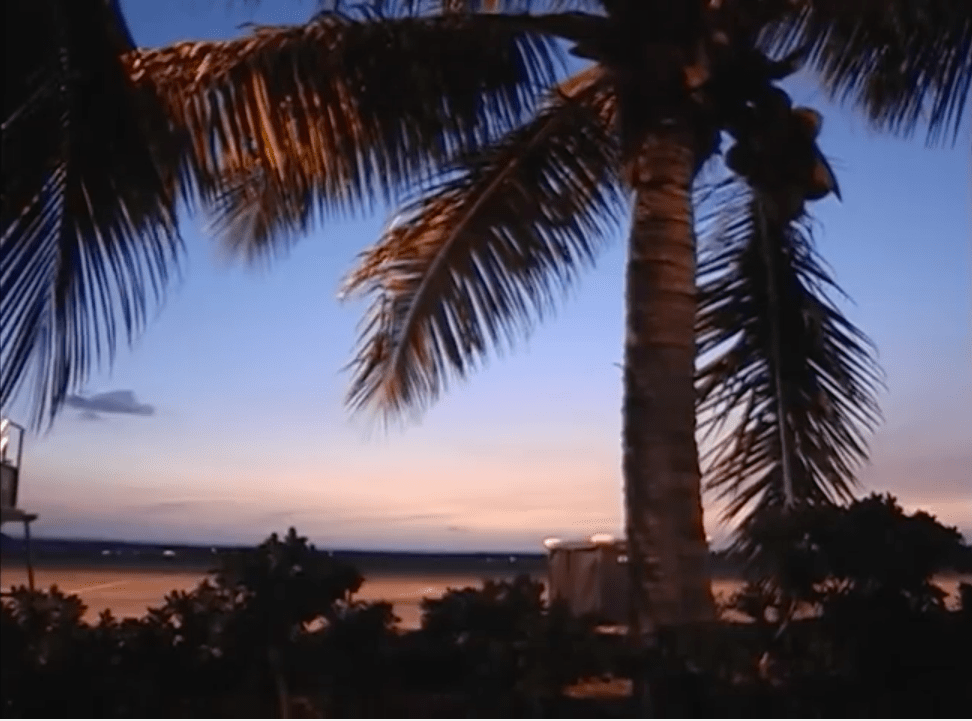 Musik Montag : Hawaii Feeling zum Wochenstart