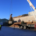 Madsen bear loaded onto crane. Photo courtesy of Kodiak National Wildlife Refuge