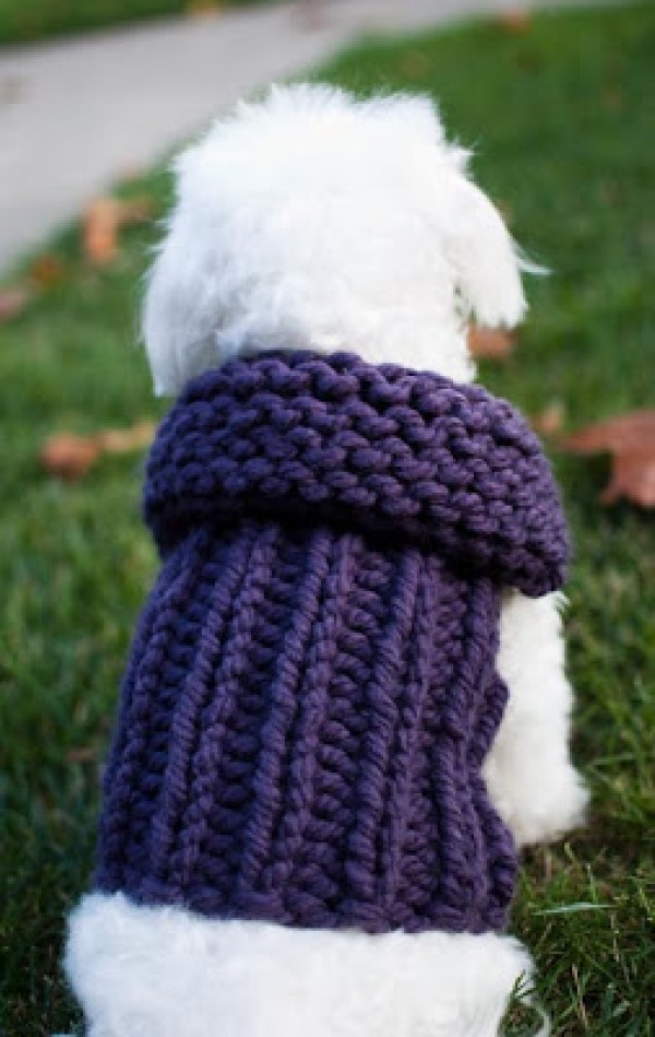 Dog Coat Knitting Pattern : Free knitting pattern dog coat anaf for