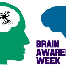 This Week is Brain Awareness Week
