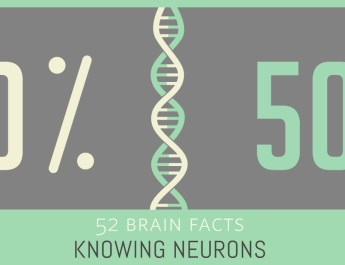 21_Half-of-gene_Cover_Knowing-Neurons