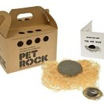The Rise of the Pet Rock