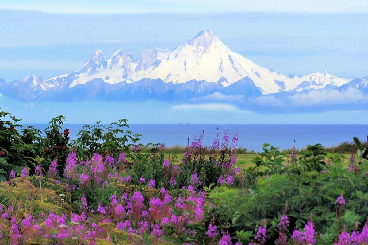 Kupno Alaski przez USA - najgorsza inwestycja w historii Ameryki?
