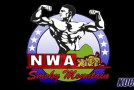 Video: NWA Smoky Mountain TV – June 15, 2013