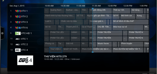 EPG For Vietmedia LiveTV