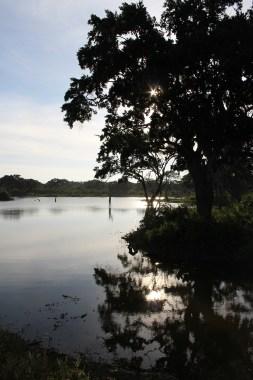 Safari in Uda Walawe park