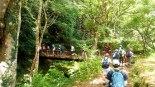 森林帯入り口