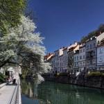 Ljubljana-along-the-riverbanks-D.-Brenko