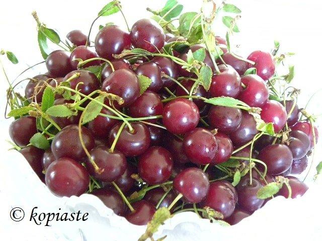 sour cherries - vyssino