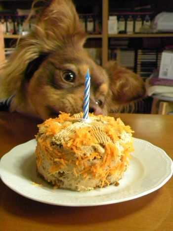 Dias' first Carrot Cake