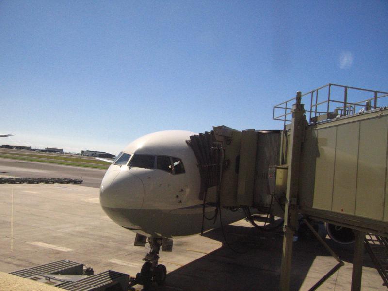 子連れハワイ旅行の飛行機、航空会社はどこがいい?