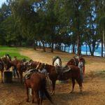 ハワイで乗馬タートルベイリゾートの乗馬体験