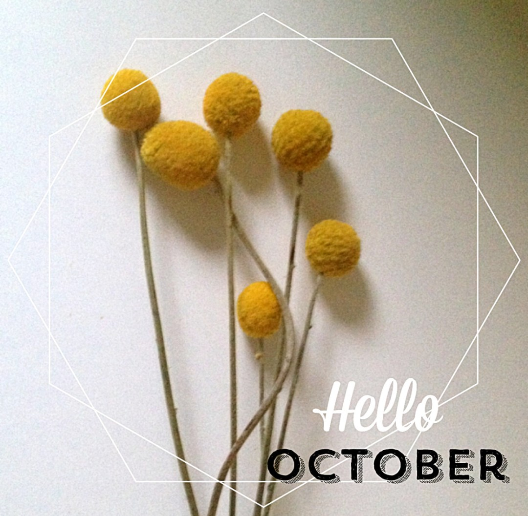"These lovely flowers are called ""Craspedias"" or a ""Billy buttons""."
