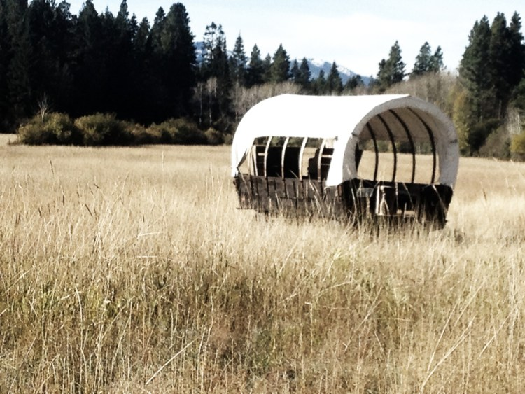 Covered wagons for hay rides.
