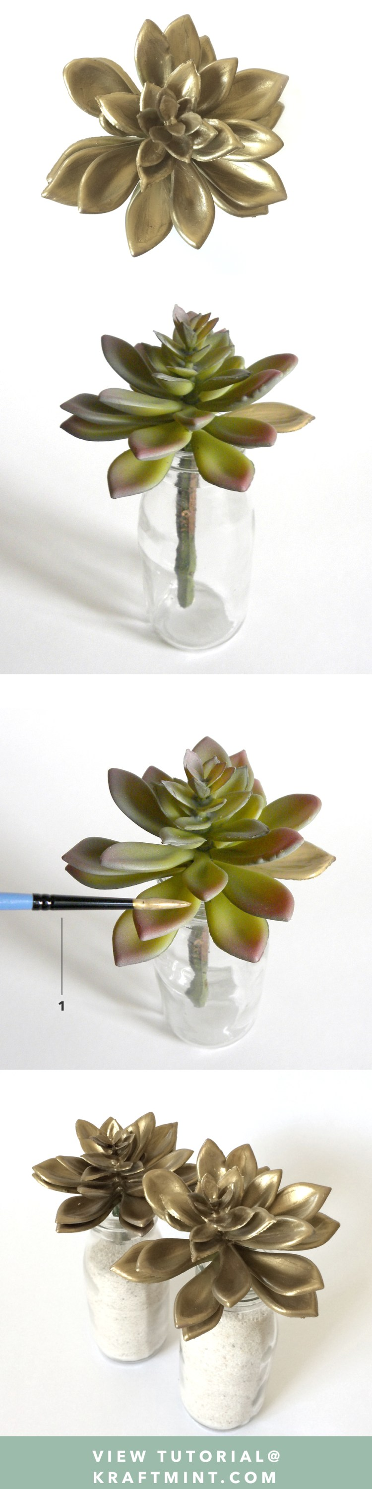 Golden Succulents DIY kraftmint.com