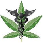 Medical-Marijuana-300