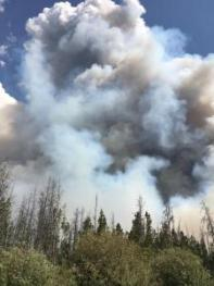 fire in Routt National Forest2