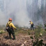 Beaver Creek Fire 2