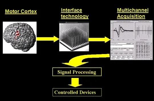 Brain-to- Machine Mechanism