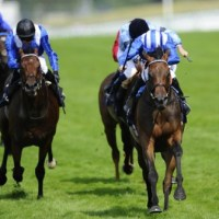 Taghrooda defeat demonstrates unreliability of the form guide