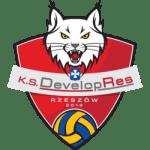 developres_skyres_rzeszow