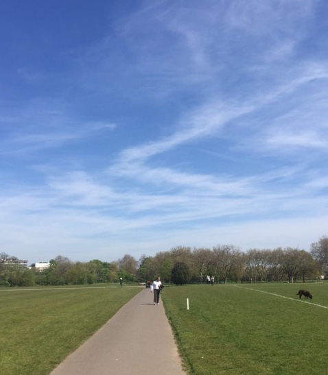 Sublime Skies- Regents Park