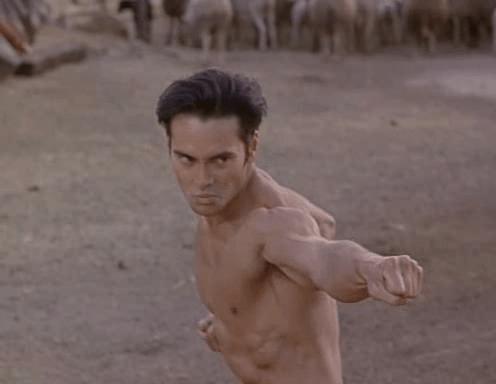 mark dacascos kickboxer 5 � kungfu kingdom