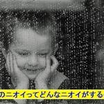 台風の来る前と後でにおいが違う?台風の時に出産が増えるって本当なの?