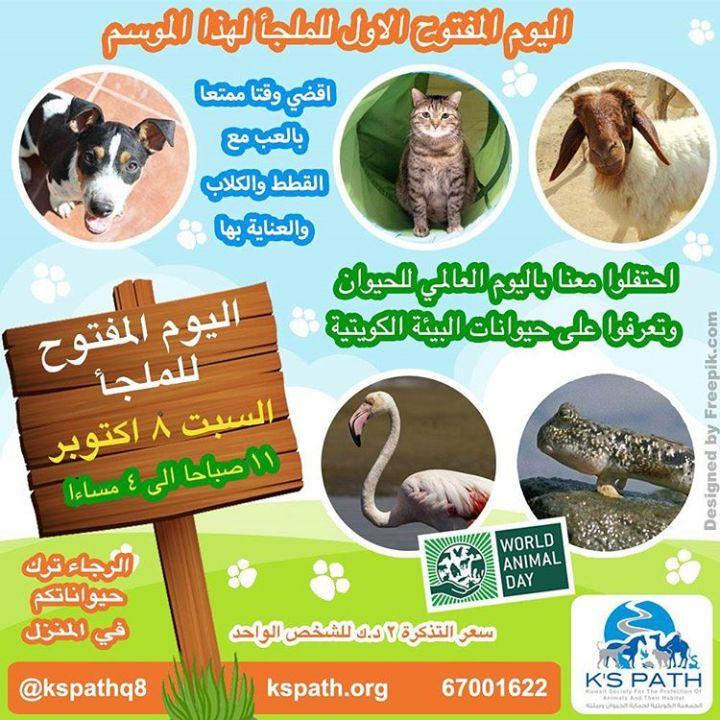 Shelter Open Day – ملجأ للحيوانات الأليفة