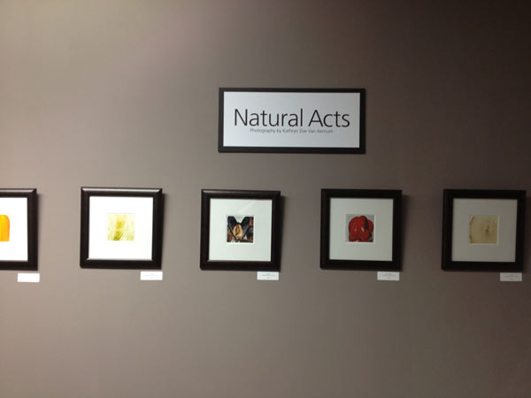 Natural Acts: January 17 – February 21