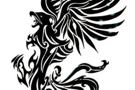 phoenix tribal tatoo by goldstress972