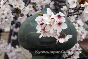 Our Kyoto Blog