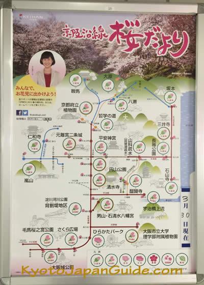 Keihan Sakura Update Poster 001