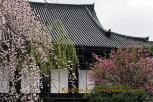 Temple with Flowers 011