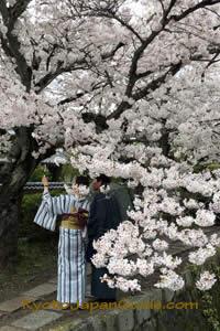 Kimono on Philosophers Path 064