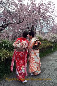 Rvierside sakura and kimono 081