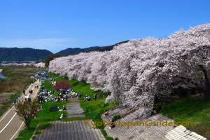 Sewari-tei Park Yawata-shi 001