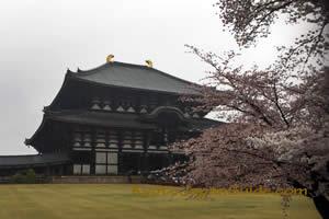 Todai-ji Temple Nara 031