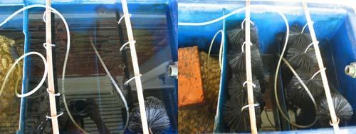 KY Koi Pond Filter System