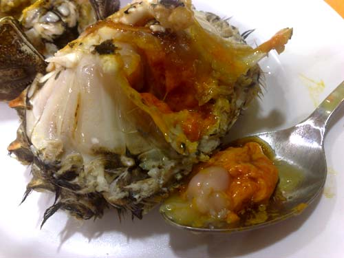 Shanghai Hairy Crab (大閘蟹)
