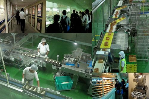 High 5 bread factory floor